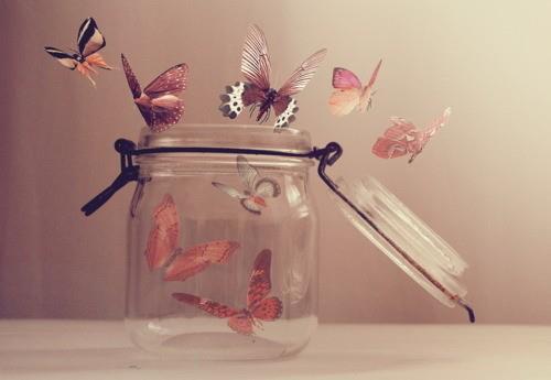 Micro trasgressioni quotidiane Farfalle
